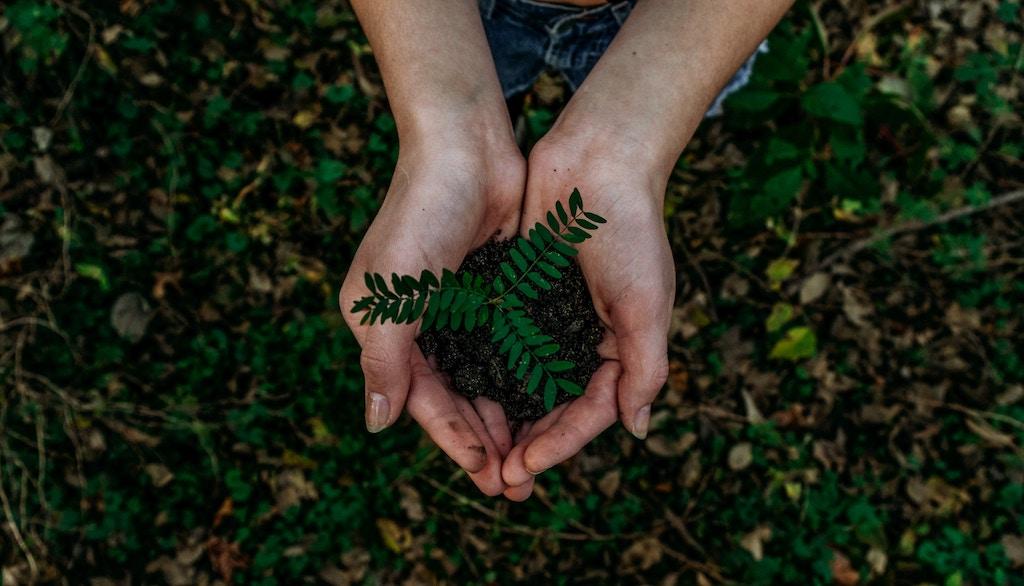 Bharat Bhise – Tips on Living Greener